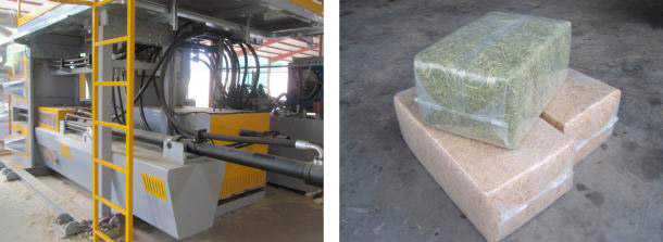 'HDB800G press and bagging machine and some bales of chopped straw and alfalfa.'